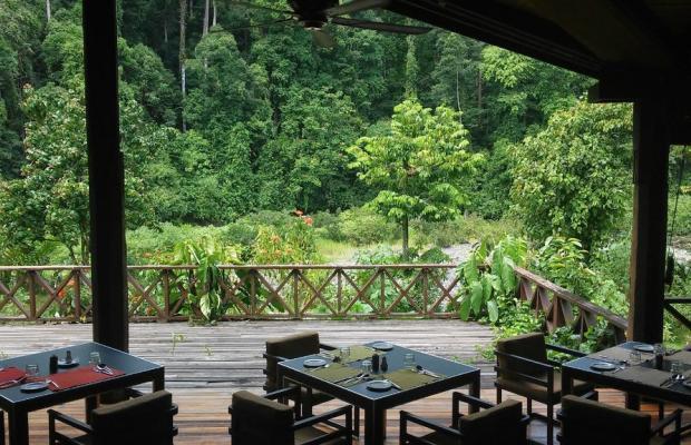 фотографии отеля Borneo Rainforest Lodge изображение №11