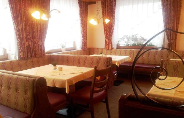 фотографии отеля Helvetia изображение №23