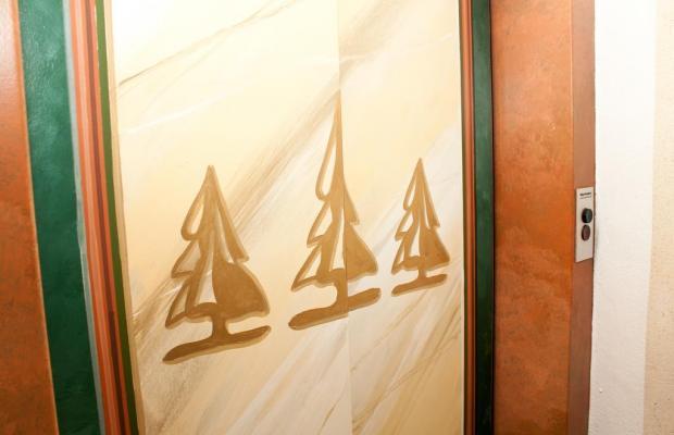 фотографии отеля Waldcafe изображение №7
