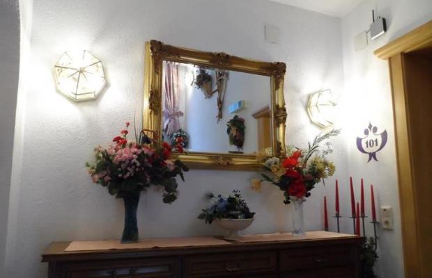 фотографии отеля Renate изображение №7
