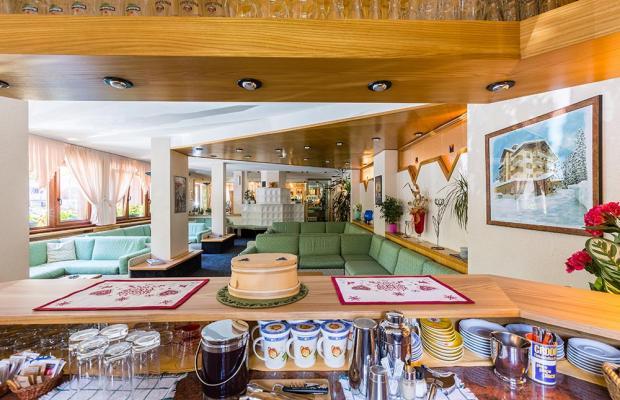 фотографии Hotel Alpina изображение №36