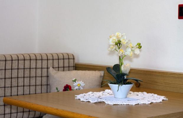 фото отеля Hotel La Molinella изображение №29