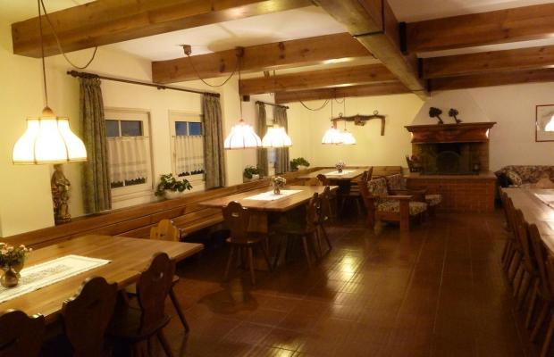 фото Casa Metz изображение №30