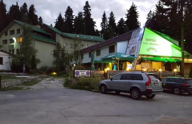 фото отеля Forest Star (ex. Gorska Zvezda) изображение №5