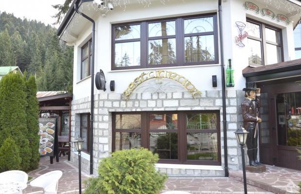 фотографии отеля Альпин (Alpin) изображение №19