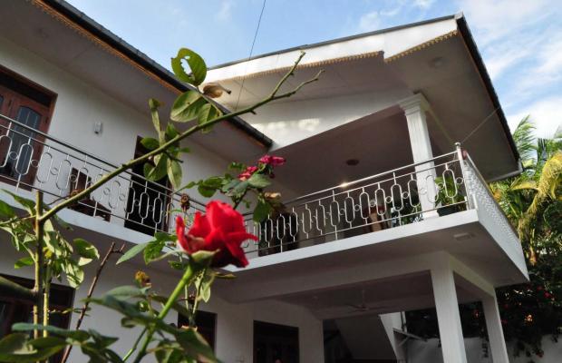 фото Polina Resort изображение №26