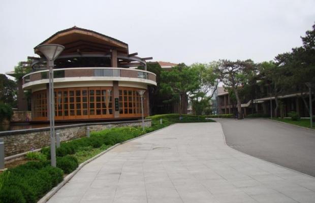 фото Dong Jing Lu (Дон Цзин Лу) изображение №18