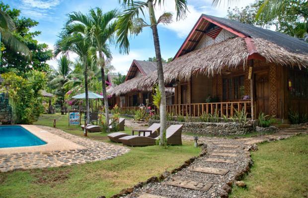 фотографии отеля Oasis Resort изображение №27