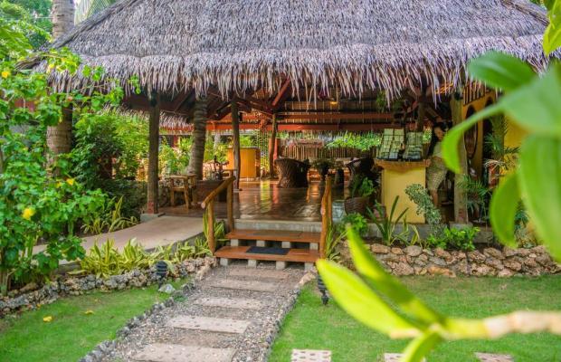 фотографии отеля Oasis Resort изображение №3
