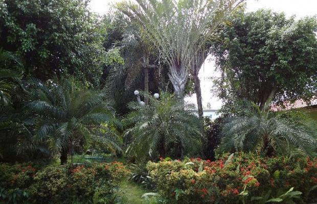 фотографии Olman's View Resort изображение №8