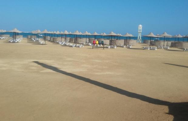 фотографии Movenpick Resort Soma Bay изображение №12