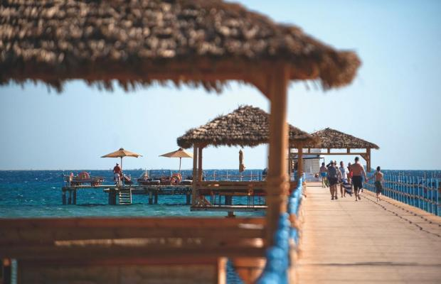 фотографии Amwaj Blue Beach Resort & Spa (ex. Amwaj Abu Soma Resort & Spa) изображение №8