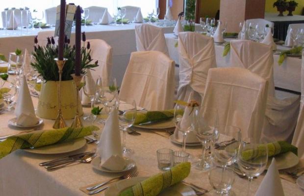 фотографии отеля Wellness Hotel Aranyhomok Business City изображение №3