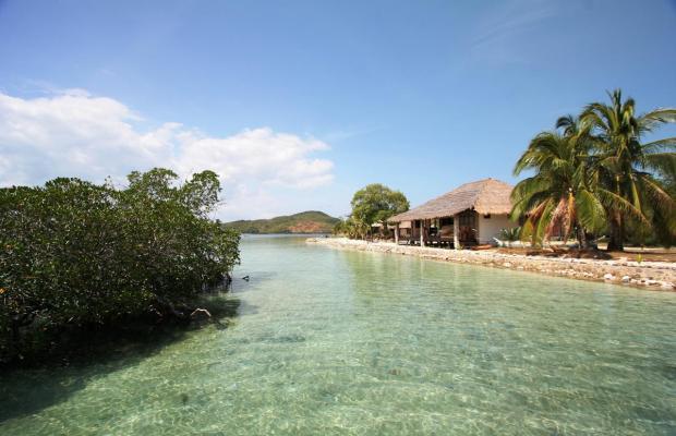фотографии отеля Coral Bay Beach and Dive Resort изображение №19