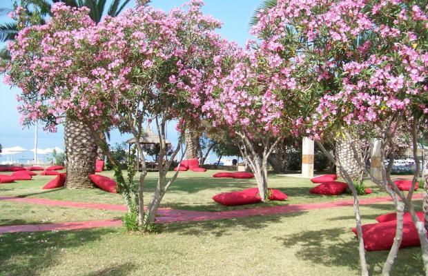 фотографии отеля Club Lookea Maxima Bay (ex. Club Hotel Maxima; Sun Club Biltur) изображение №31