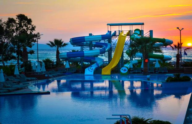 фотографии отеля Flora Garden Ephesus (ex. Club Mersin Beach) изображение №27