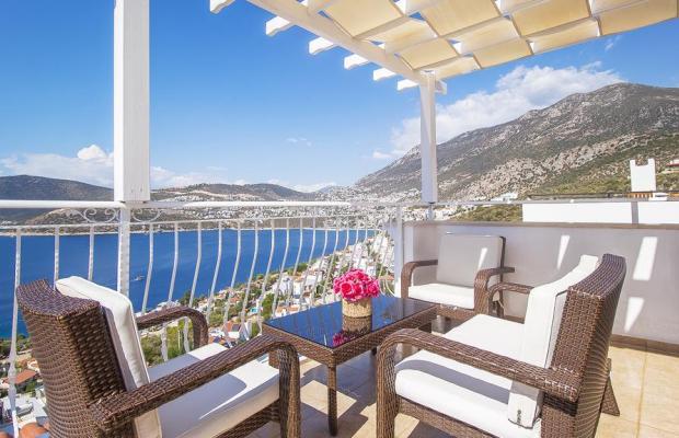 фото отеля  Villa White Star изображение №21