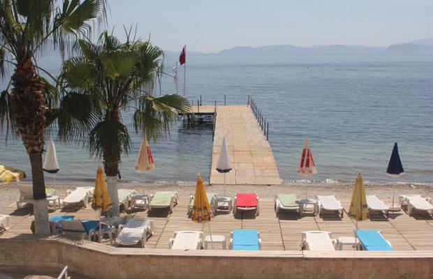 фотографии отеля Coastlight (ex. Polat Beach) изображение №15