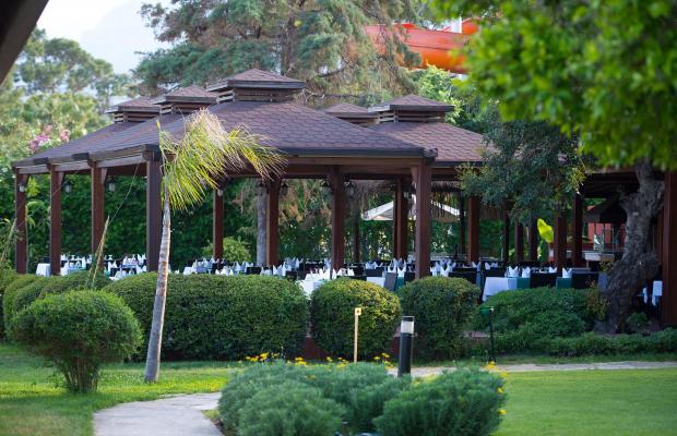фотографии Otium Hotel Life (ex. Magic Life Kemer) изображение №12
