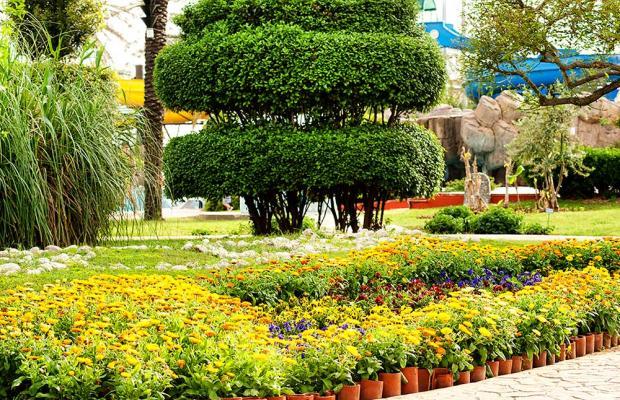 фото Belconti Resort изображение №42