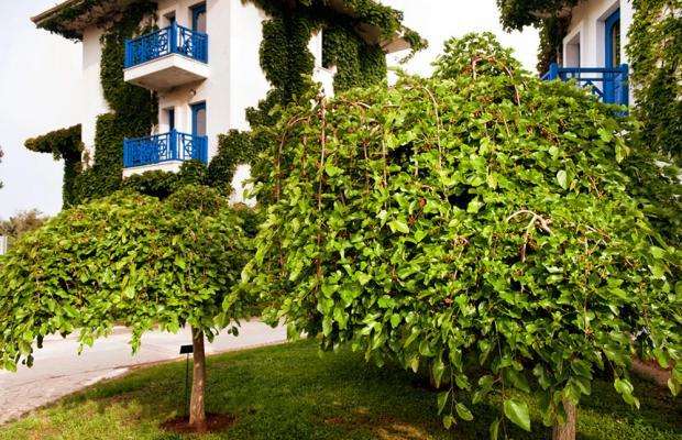 фотографии Belconti Resort изображение №8