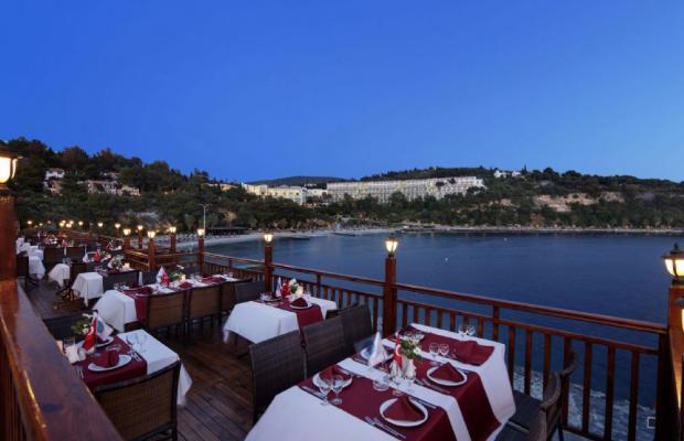 фотографии Pine Bay Holiday Resort изображение №28