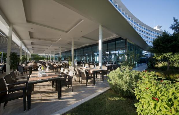 фото Q Premium Resort изображение №6