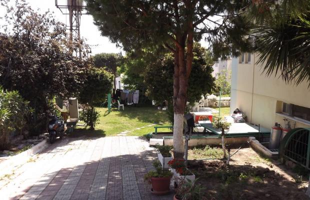 фотографии Albora изображение №44