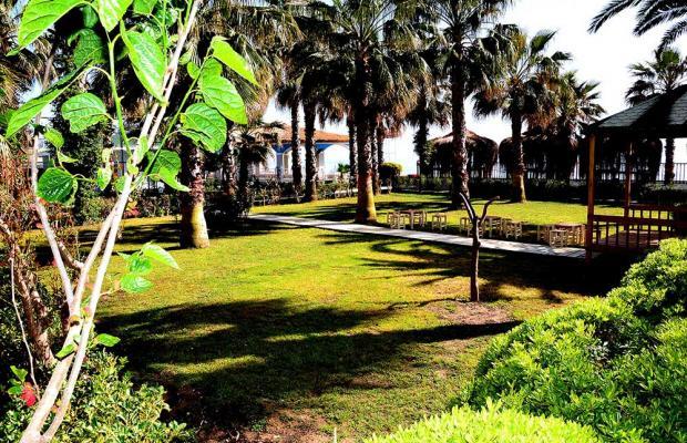 фотографии Holiday Park Resort изображение №20