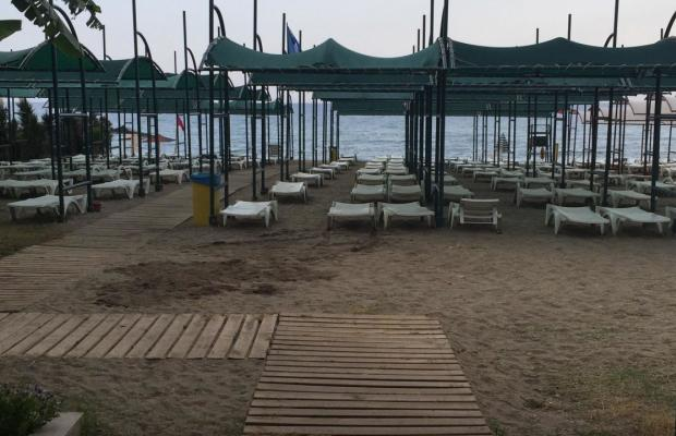 фотографии Telatiye Resort (ex. Seal of Star) изображение №24