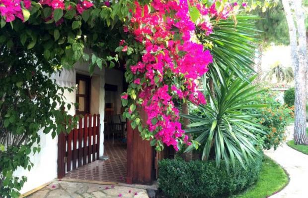фотографии El Oasis Resort изображение №16