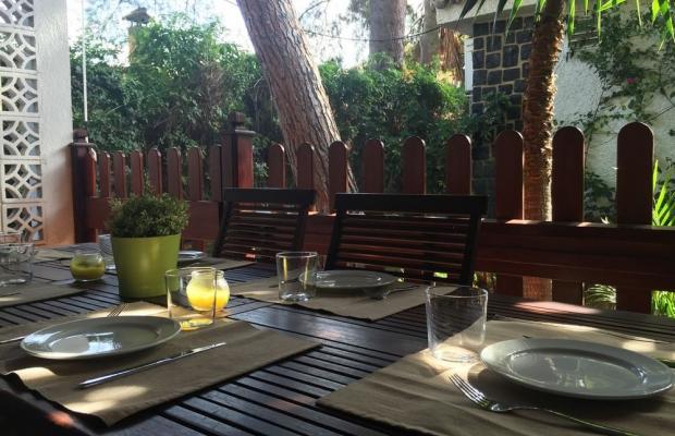 фотографии отеля El Oasis Resort изображение №3