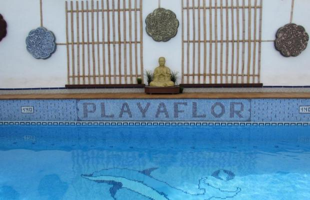 фотографии Playaflor Chill-Out Resort изображение №12