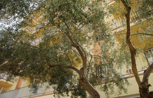 фотографии отеля Stella Maris изображение №19