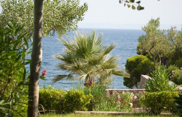 фотографии отеля Danai Beach Resort & Villas изображение №7