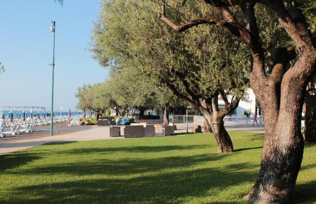 фотографии Torre Oliva изображение №44