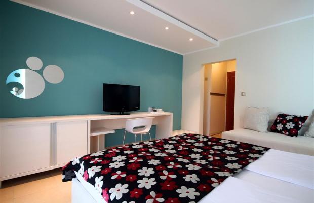 фотографии отеля Domador Becici изображение №39
