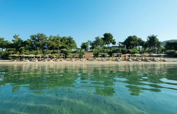 фото отеля Trikorfo Beach изображение №21
