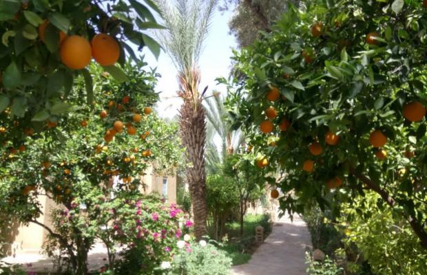 фото Riad Dar Zitoune изображение №54