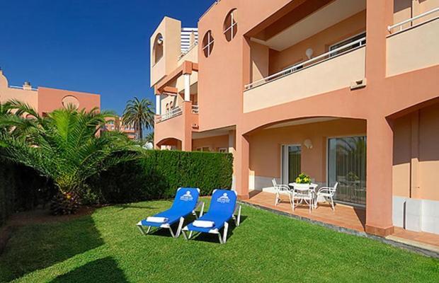 фотографии отеля Oliva Nova Beach & Golf Resort изображение №35