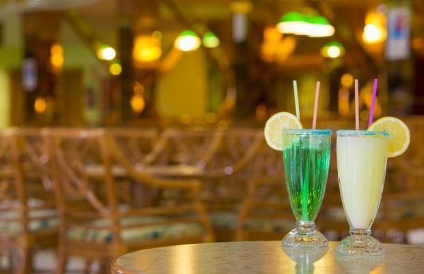 фотографии отеля Palm Beach  изображение №23