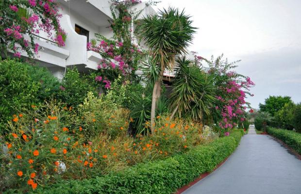 фото отеля Hotel Tina Flora изображение №17