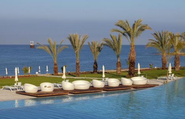 фотографии отеля Tsokkos King Evelthon Beach Hotel & Resort изображение №35