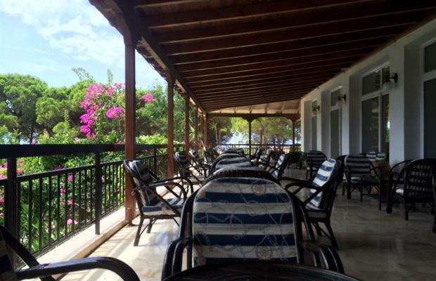 фотографии отеля Irinna изображение №19