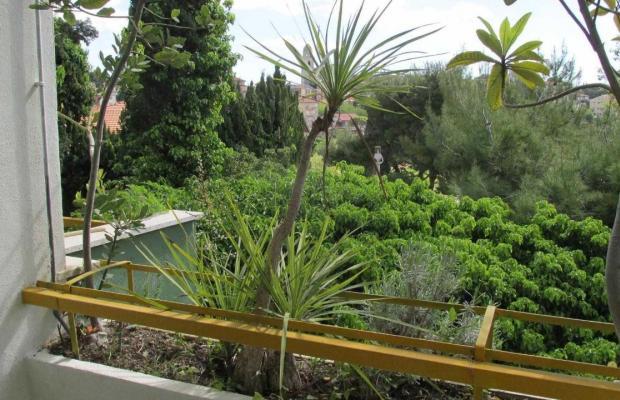 фотографии отеля Conchiglia Verde изображение №3